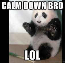 Panda Meme - 30 of the funniest and cutest panda memes on the web i can has