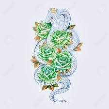 sketch of snake cobra with green roses on a white background