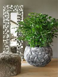 20 best planters for life collection images on pinterest modern