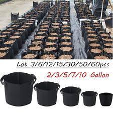 plant pots ebay