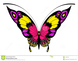 beautiful butterfly for a design stock vector illustration of