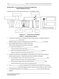 worksheet 3 2 the structure of the plasma membrane cell membrane