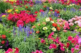 Pretty Garden Ideas Pretty Garden Flowers Pretty Pictures Garden Stylish Ideas Garden