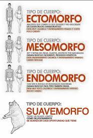 Memes De Gym En Espa Ol - gym memes en español y uds cuál son nyx facebook