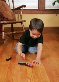 hardwood floor myths hardwood and don t mix