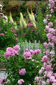 139 best planting effects images on pinterest planting