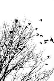 tree birds stock photo 14964492 permanent portable artwork