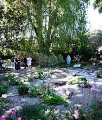 landscape season approaches matilija nursery california
