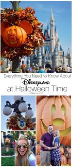 everything you need to about disneyland at time