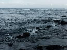 punalu u0027u black sand beach j u0027entends ta voix