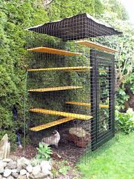 Outdoor Cat Condo Plans by Outdoor Cat Enclosure Beautiful World Living Environments Www