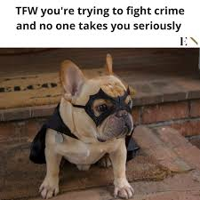 French Bulldog Meme - 14 funny memes that will leave you on the floor laughing