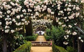 wedding flower arches uk wedding flowers wedding flower arches uk