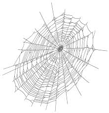 spider web clipart png clipartxtras