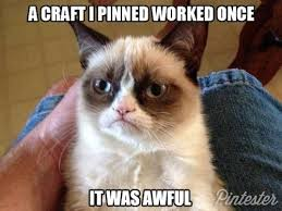 Frowning Meme - 27 best the cutest cat images on pinterest funny animals funny