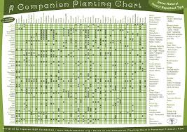 herb growing chart the ultimate companion planting guide chart