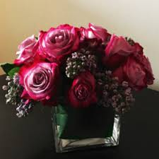 dc flower delivery i m sorry flower delivery in washington shoots and blooms of d c