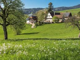 farm houses in the black forest kinzigtal oberharmersbach