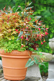 Garden Containers Ideas - container ideas garden foreplay page 2