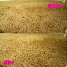 Best Clothing Stain Remover Best Homemade Carpet Spot Remover Carpet Hpricot Com