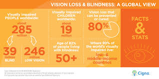 a welcoming sight home modifications for low vision residents