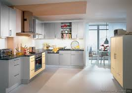 Modern Gray Kitchen Cabinets Modern Light Gray Kitchen Cabinets With Gold Hardware
