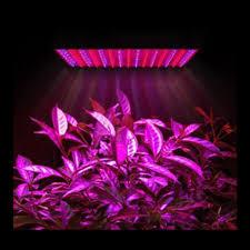 online buy wholesale indoor garden spectrum from china indoor