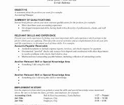 combination resume templates striking combination resume formats pdf format exles is of the