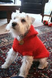 58 best knitting for animals images on pinterest free knitting