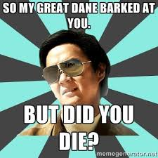 Mr Chow Meme - so my great dane barked at you but did you die mr chow meme