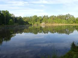 Alabama lakes images September alabama lakes outlook great days outdoors jpg