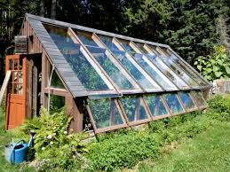 breathtaking small backyard greenhouses pics ideas amys office
