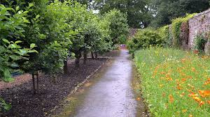 bbc radio scotland fruit trees in the walled garden the