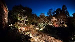 Light And Landscape - nc state alumni association jc raulston arboretum moonlight in