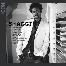 Next Thing You Know She Hit The Floor Shaggy U2013 It Wasn U0027t Me Lyrics Genius Lyrics