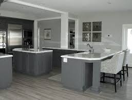 kitchen cabinets with gray floors pin by diza design on grey hardwood floors grey kitchen