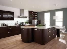 modern brown kitchen cabinet kitchen pinterest dark brown