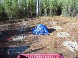 16x24 post and pier cabin alaska cabin progress in timber framing log construction
