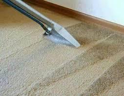 How Good Is The Rug Doctor Best 25 Carpet Shampoo Solution Ideas On Pinterest Diy Carpet