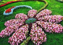 Planning A Flower Garden Layout Flower Garden Ideas Flower Shaped Floral Garden Layout