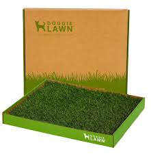 amazon com doggielawn disposable dog potty real grass large