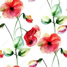 poppies flowers seamless wallpaper with colorful poppies flowers watercolor