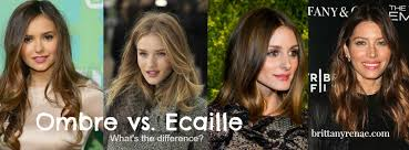 ecaille hair trends for 2015 ecaille brittany renae