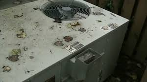 1990 trane xl1200 heat pump u0026 2004 trane xe 1200 gas pack youtube