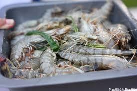 cuisiner gambas recette de gambas marinées cuites à la plancha
