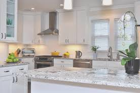kitchen best buy kitchen cabinets online interior decorating