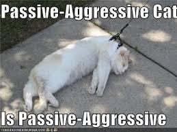 Passive Aggressive Meme - passive aggression in different types page 4