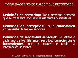 significado de imagenes sensoriales wikipedia modalidades sensoriales