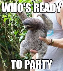 Sloth Meme Pictures - sloth meme funny sloth images and dirty sloth memes