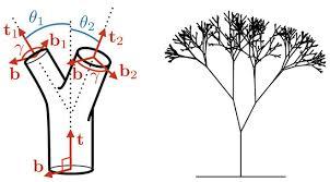 leonardo s formula explains why trees don t splinter wired